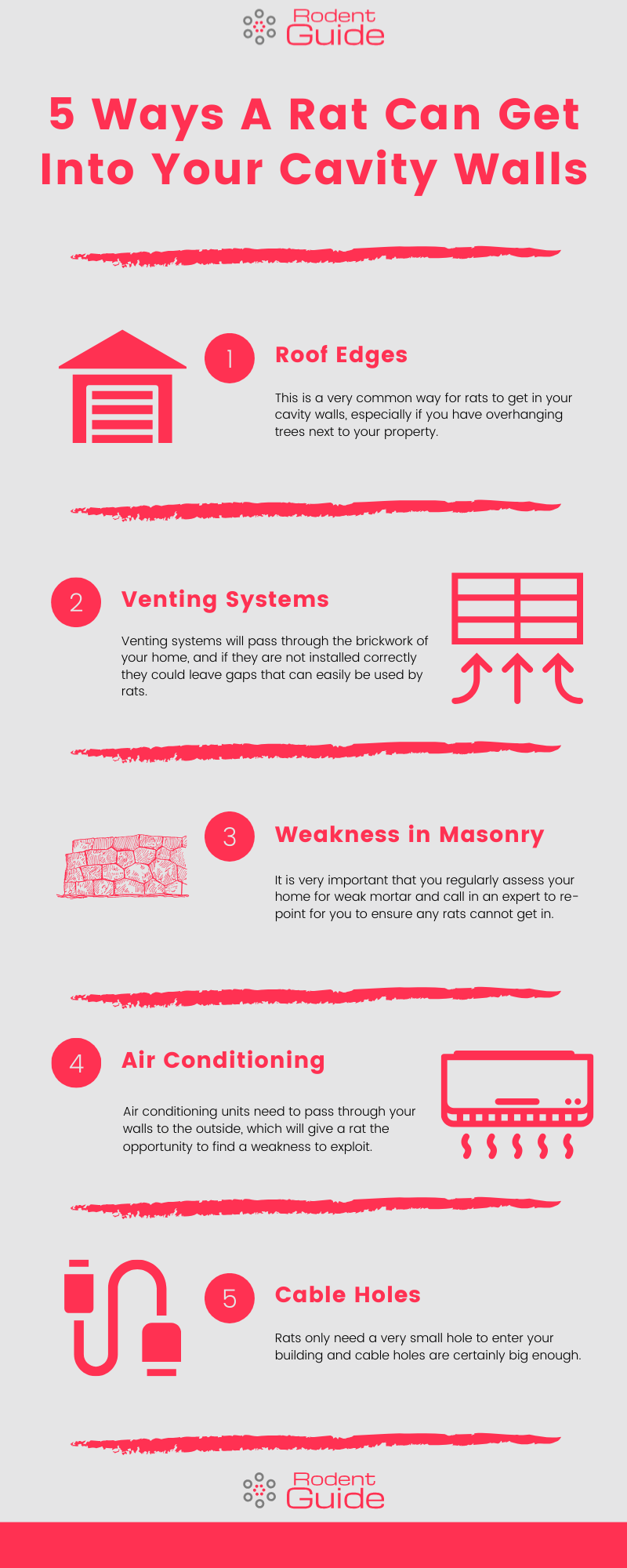 5 Ways A Rat Can Get Into Your Cavity Walls Infographic