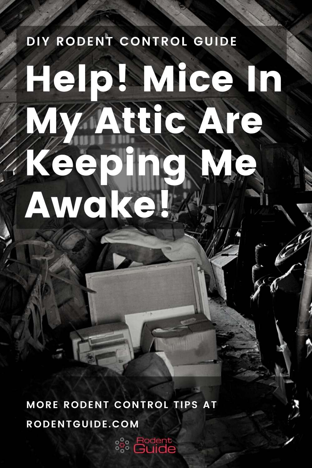 Help! Mice In My Attic Are Keeping Me Awake!That Work!