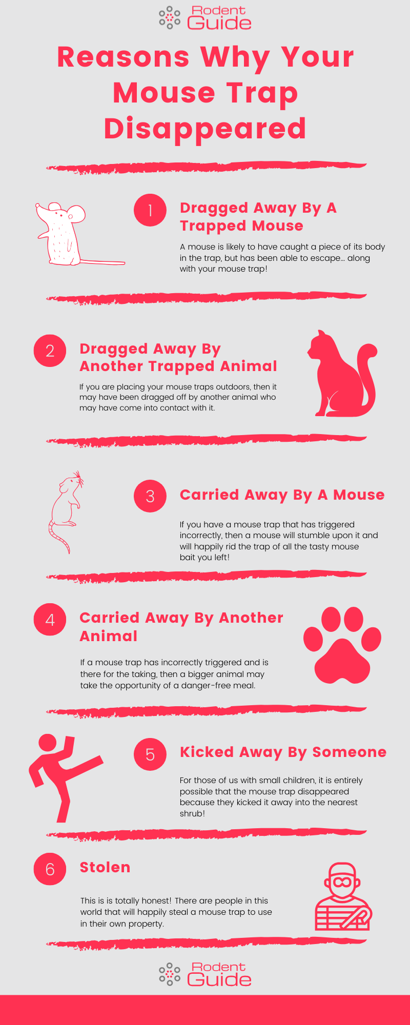 Reasons Why Your Mouse Trap Disappeared Infographic
