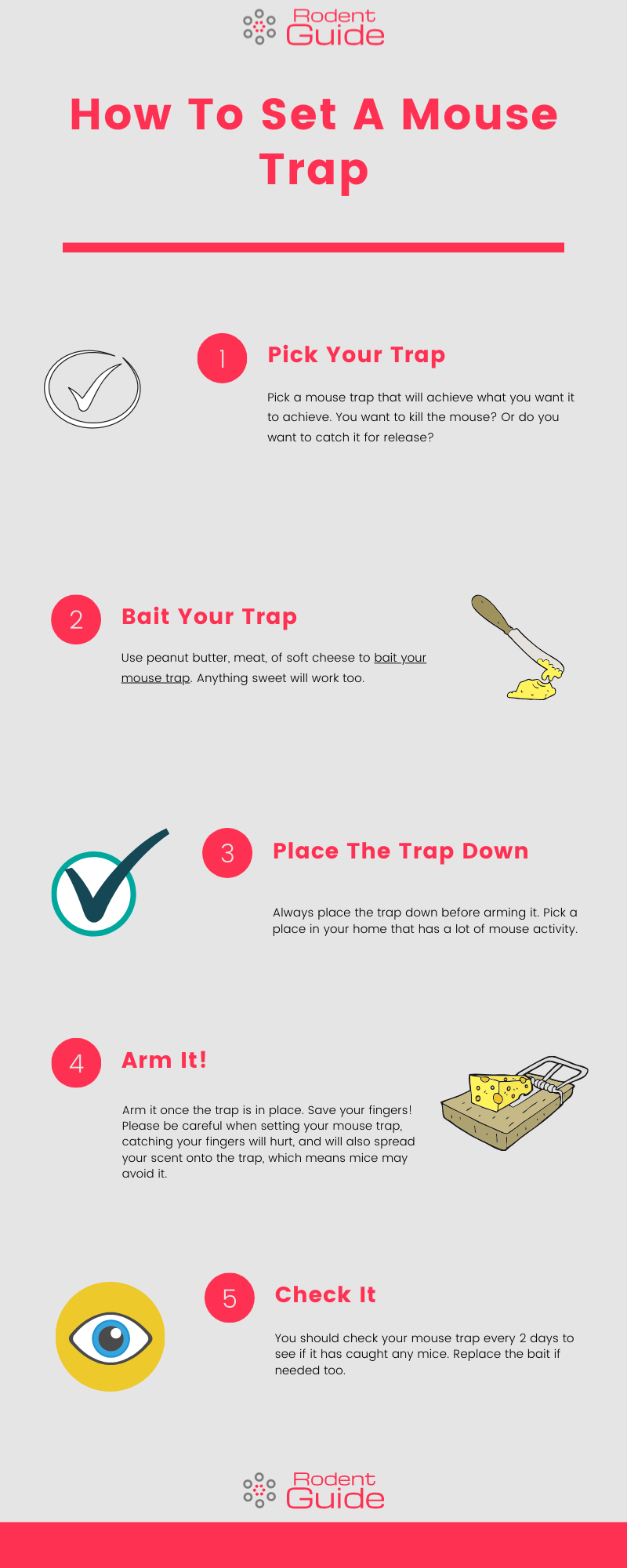 How to set a mouse trap infographic