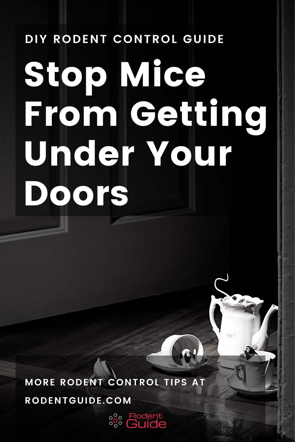 Stop Mice From Getting Under Your Doors