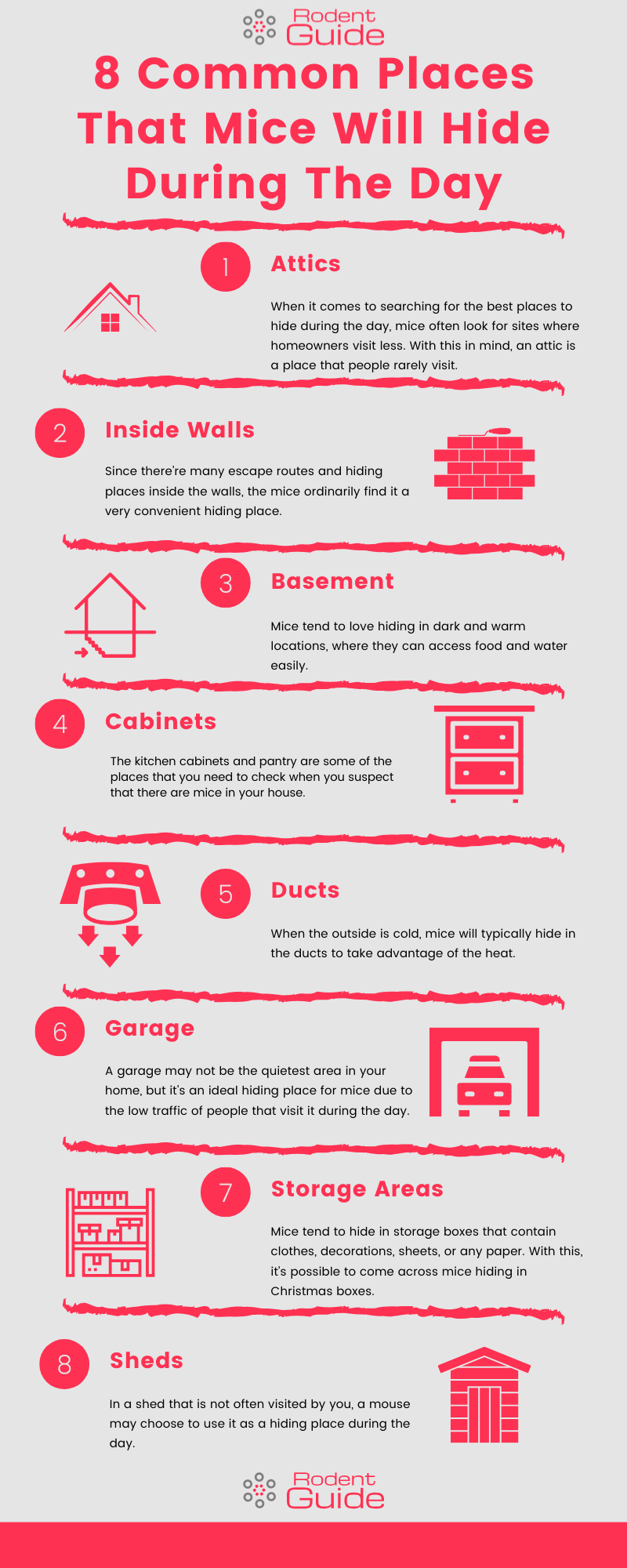 Common Places That Mice Will Hide During The Day Infographic