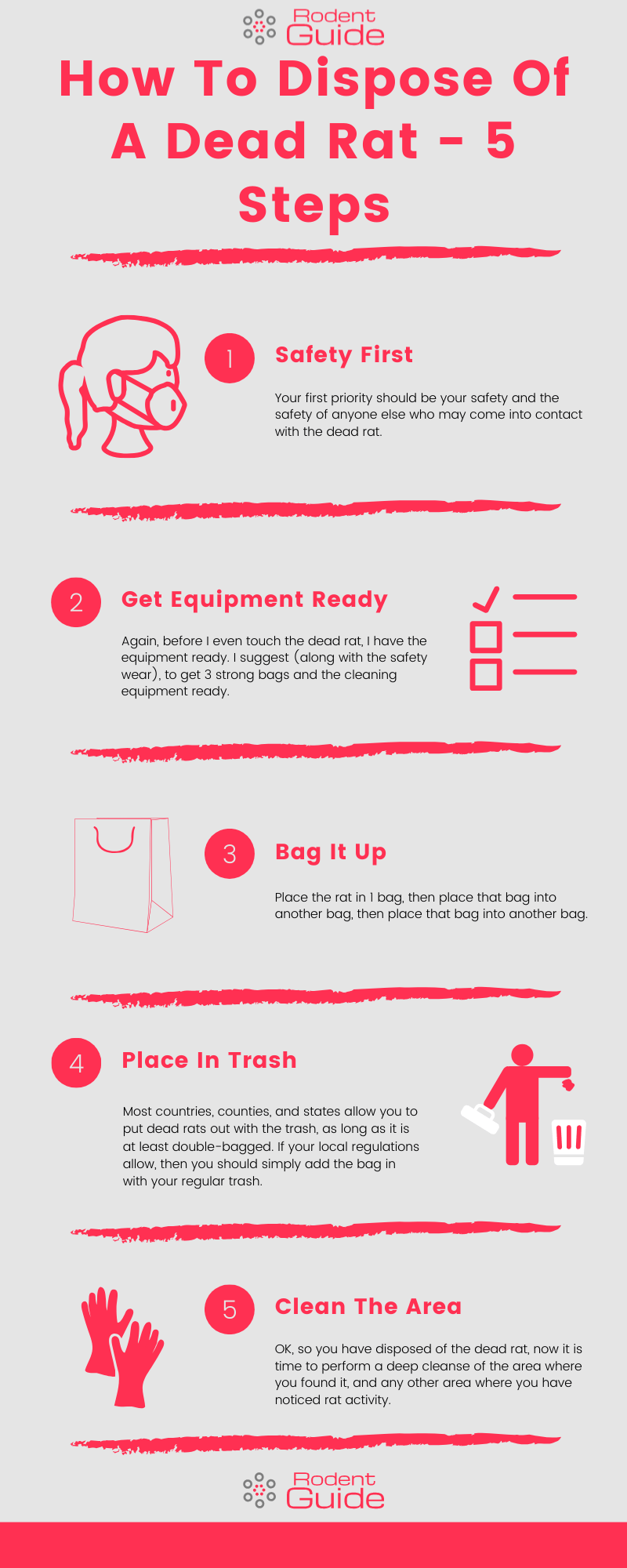 How To Dispose Of A Dead Rat Infographic